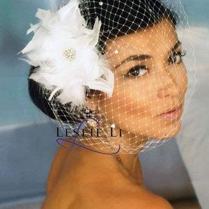 Birdcage Veil w/Feather Fascinator, French Net NWT